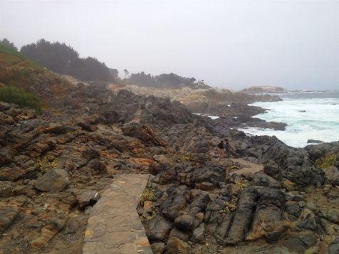 zapallar-to-cachagua-hike-14